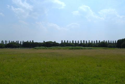 広場からのポプラ並木
