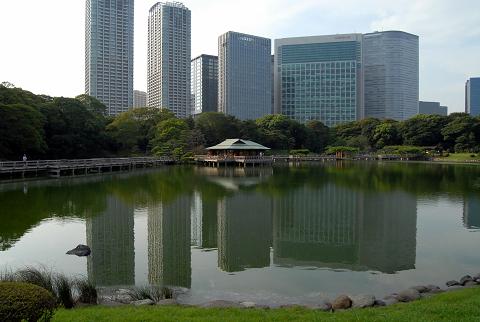 園と高層ビルの様子