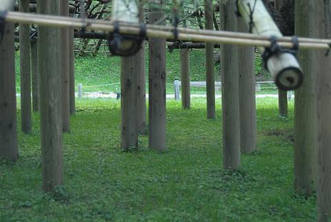 支柱の多さ2