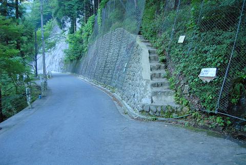 水垂れのトチノキ入山口