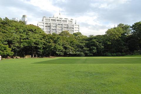 芝庭の様子