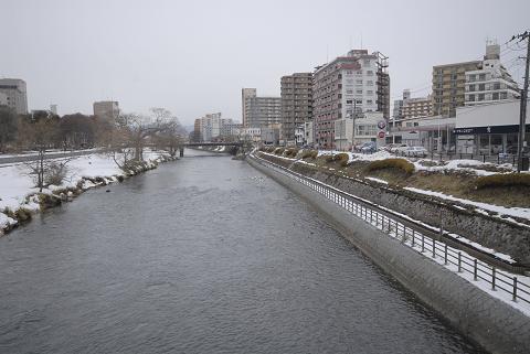 盛岡駅から石割桜に向かう道中の川と白鳥
