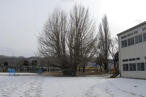 学校側からの引き画像