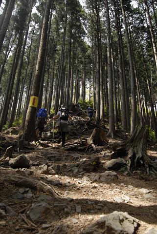 reseize2013GW高水三山登山 (139)
