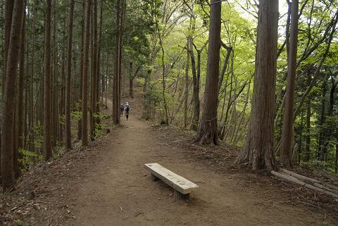 reseize2013GW高水三山登山 (160)