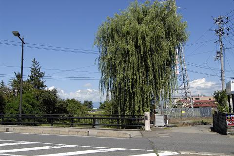 reseize涙橋(柳橋)