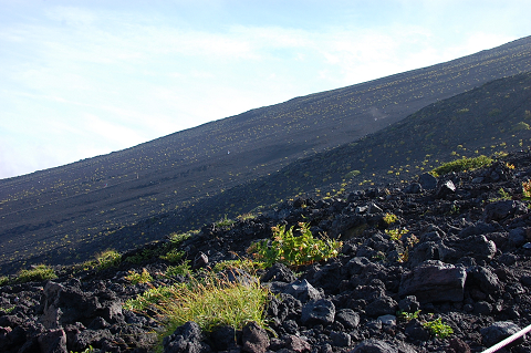 reseize201308富士山 146