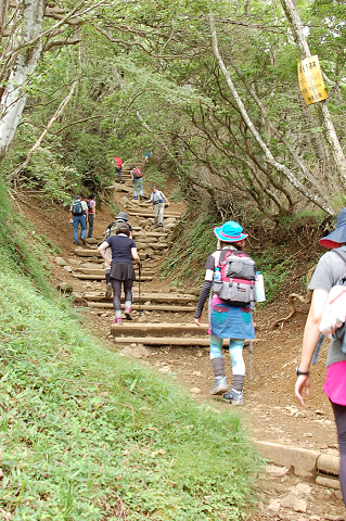 reseize2013夏-丹沢・大山 117