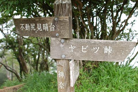 reseize2013夏-丹沢・大山 152