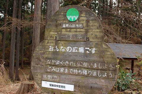 陣馬山・高尾山縦走ブログ用 (13)