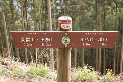 陣馬山・高尾山縦走ブログ用 (22)