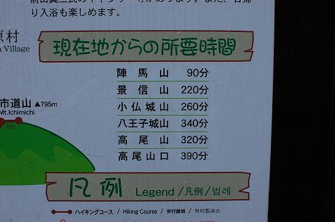 陣馬山・高尾山縦走ブログ用 (42)